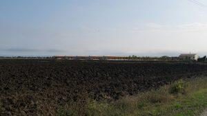 il vicino allevamento del Gruppo Cascone e la centrale a biogas a Bondeno (Ferrara)
