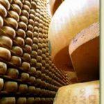 parmigiano reggiano magazzini delle tagliate castelfranco emilia