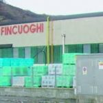 Fincuoghi Kale Italia