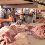Opas Carpi lavorazione-carne