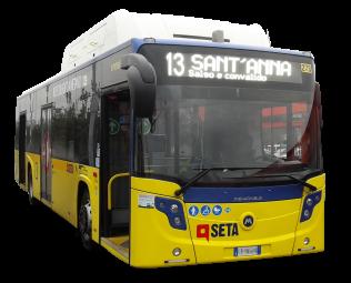 01_bus_seta_scontornato