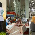 colf/badanti, logistica, settore carni: tampone obbligatorio (covid-19)